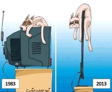 عکس های خنده دار ابان 92,عکس خنده دار گربه
