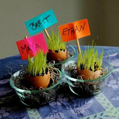 سفره هفت سین, نوروز 93, تزیین سبزه,تزیین سفره هفت سین عید 93,کاشت سبزه عید, مدل جدید کاشتن سبزه برای عید, آموزش سبزه انداختن در تخم مرغ