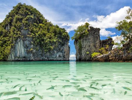 سفر با تور تایلند