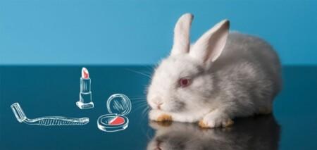 برندهای بدون تست حیوانی برای ریمل